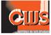 Carib Web Services website designer
